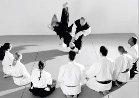 teachingjitsu